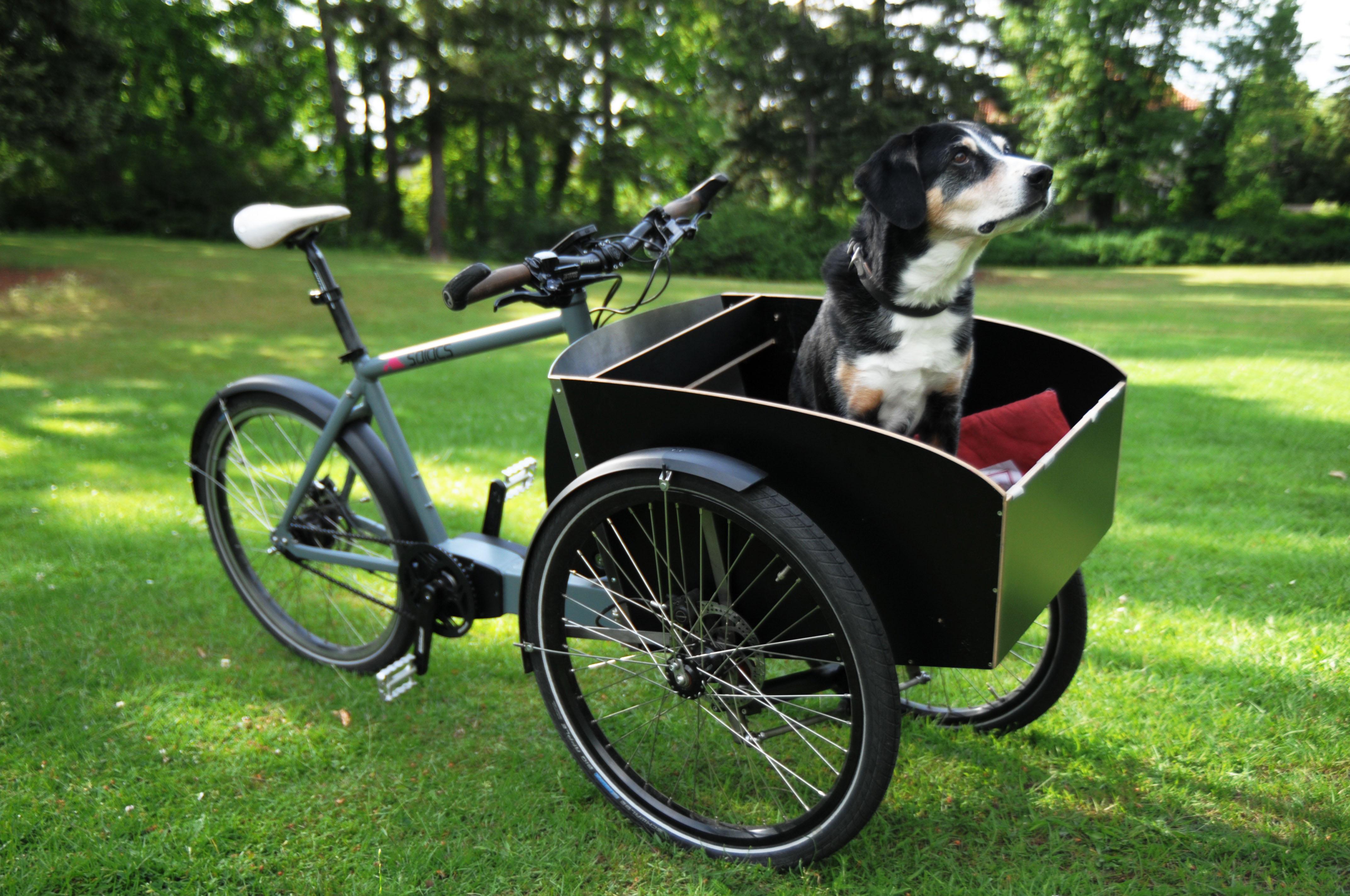 bygge el sykkel selv